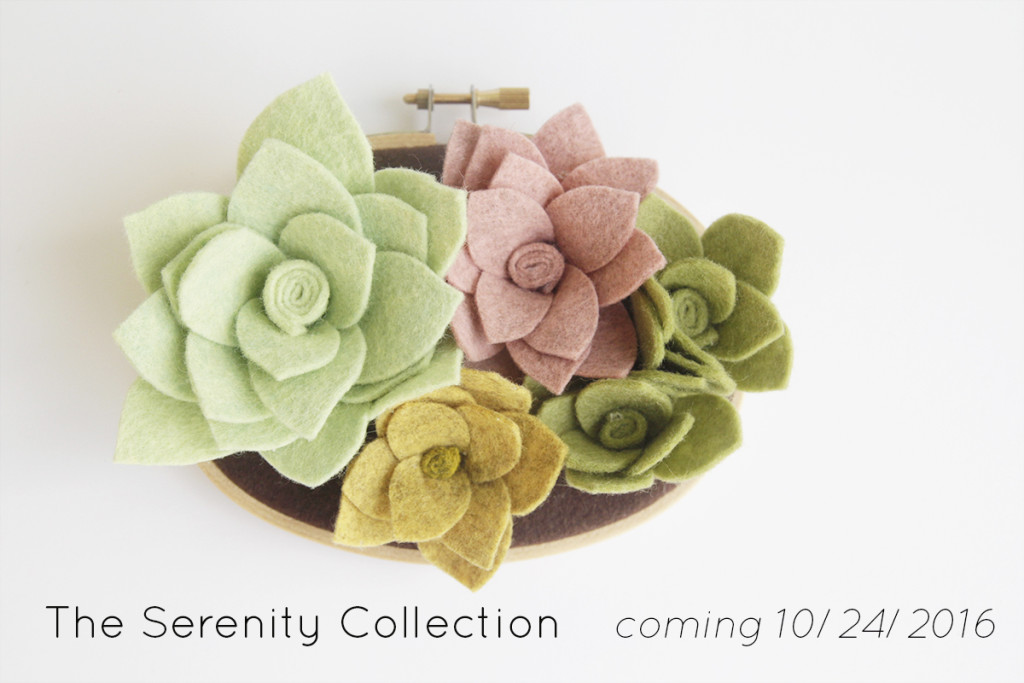 serenity-succulents3x5-announcement-blogfeatured